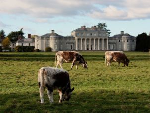 Shugborough Estate